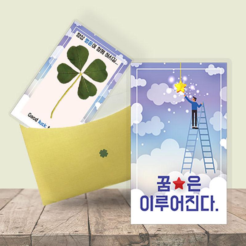 행운의 왕네잎클로버 생화카드 - 꿈은 이루어진다