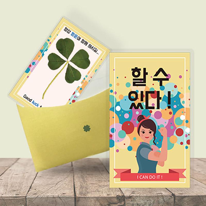 행운의 왕네잎클로버 생화카드 - 할 수 있다