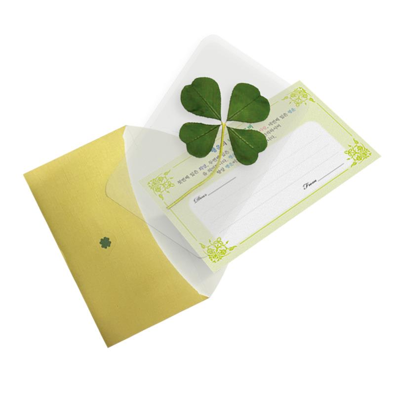 행운의 왕네잎클로버 생화 코팅카드 - 로고각인가능